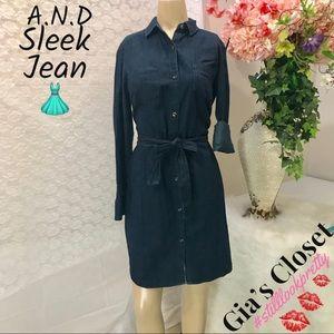 NWT/Blue jean button up dress